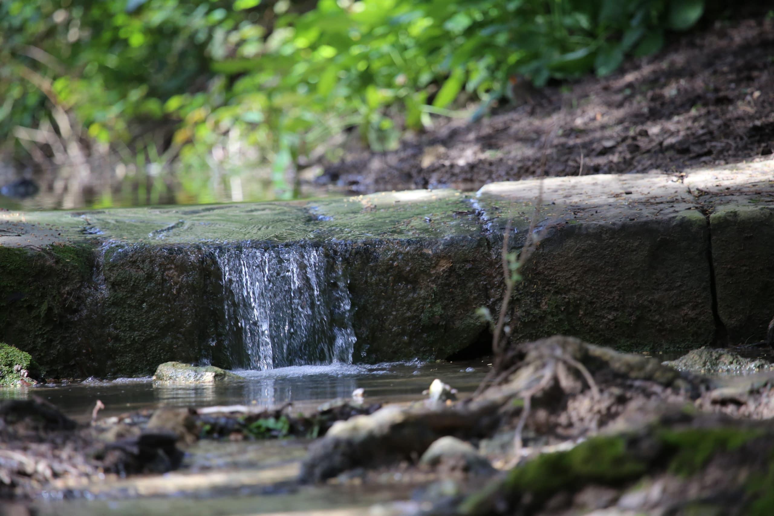 water nature awareness scarcity future